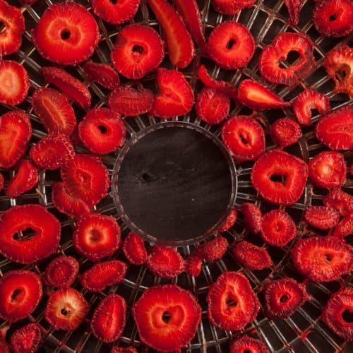 getrocknete Erdbeeren dörren